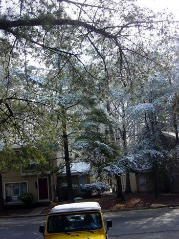 Snow in Richmond in April!